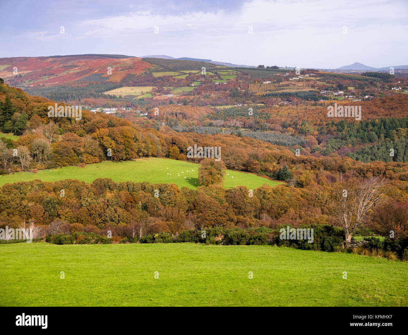 View on Irish countryside - Stock Image
