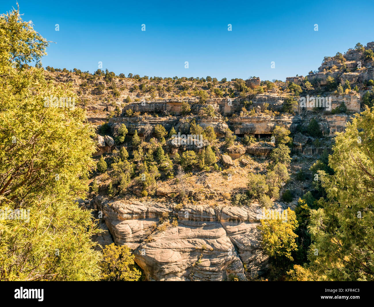the walnut canyon essay Walnut canyon in arizona was the where she learned what truly mattered and found where she had taught and wrote criticism for local papers in addition to.