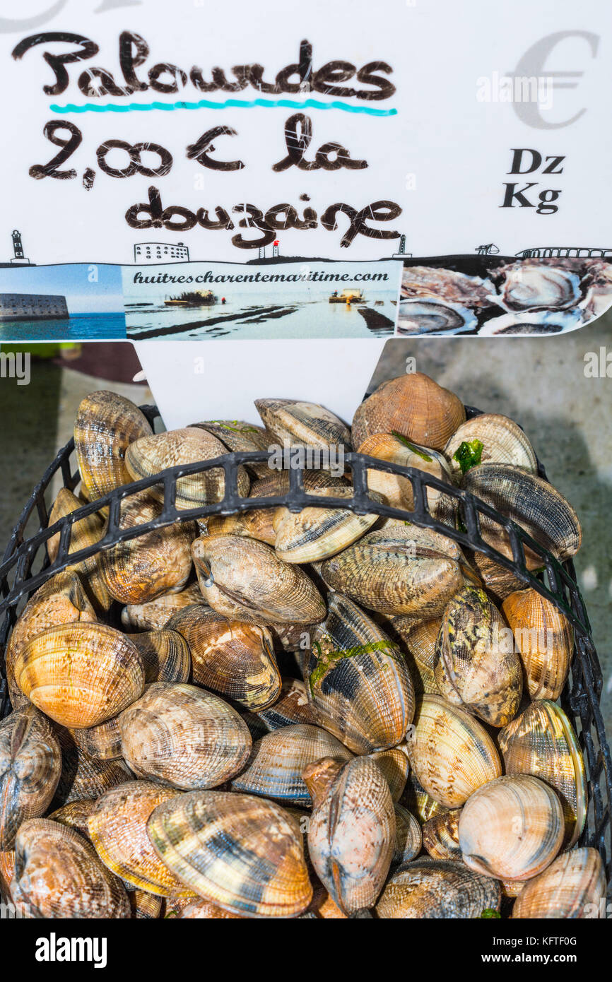 Basket of fresh clams on market stall - France. - Stock Image