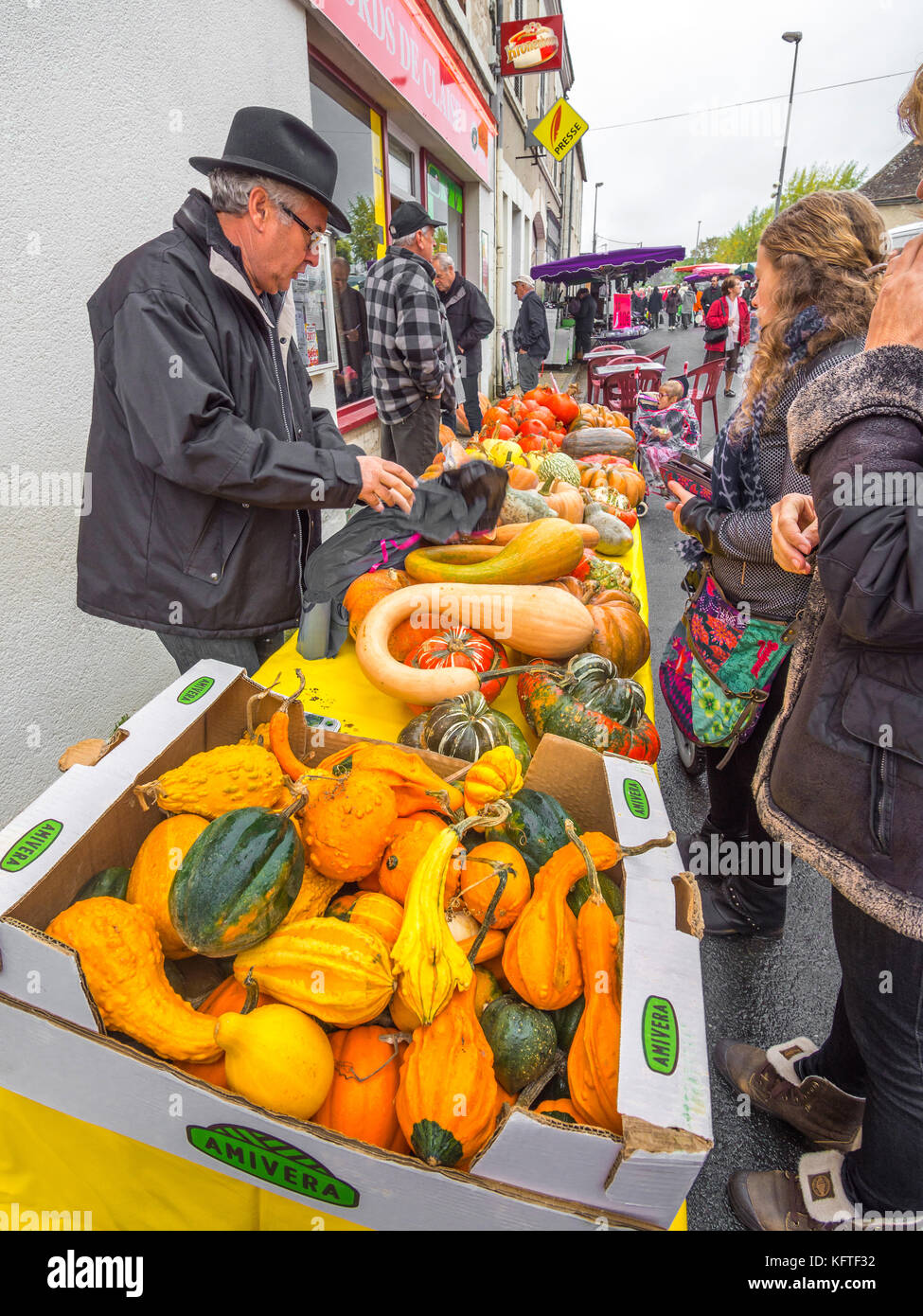 Market stall table full of pumpkins, potirons and gourds - France. - Stock Image