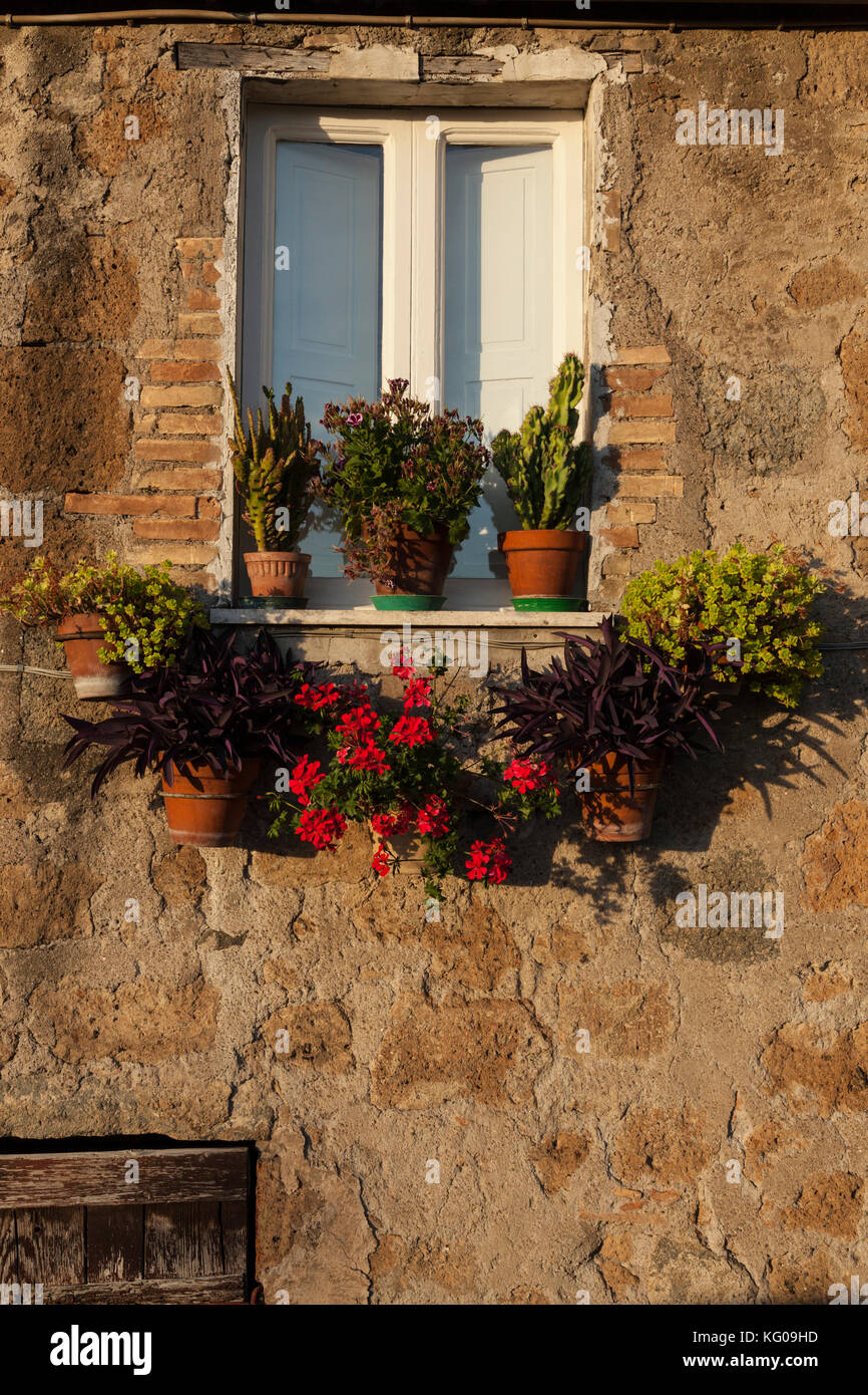 The sunsets on a window covered in flower pots in the Umbrian city of Orvieto, Italy. - Stock Image