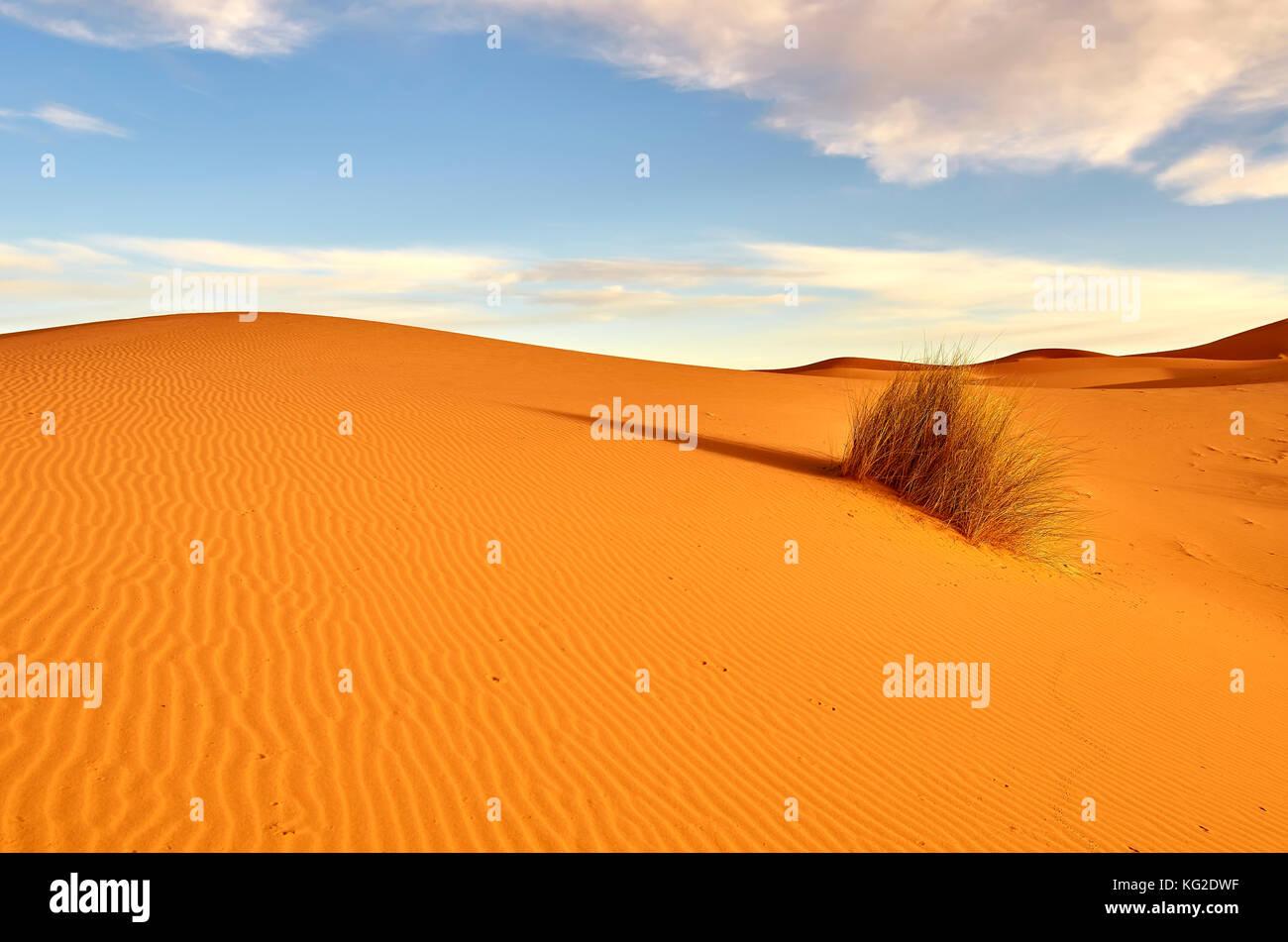 merzouga-desert-morocco-KG2DWF.jpg