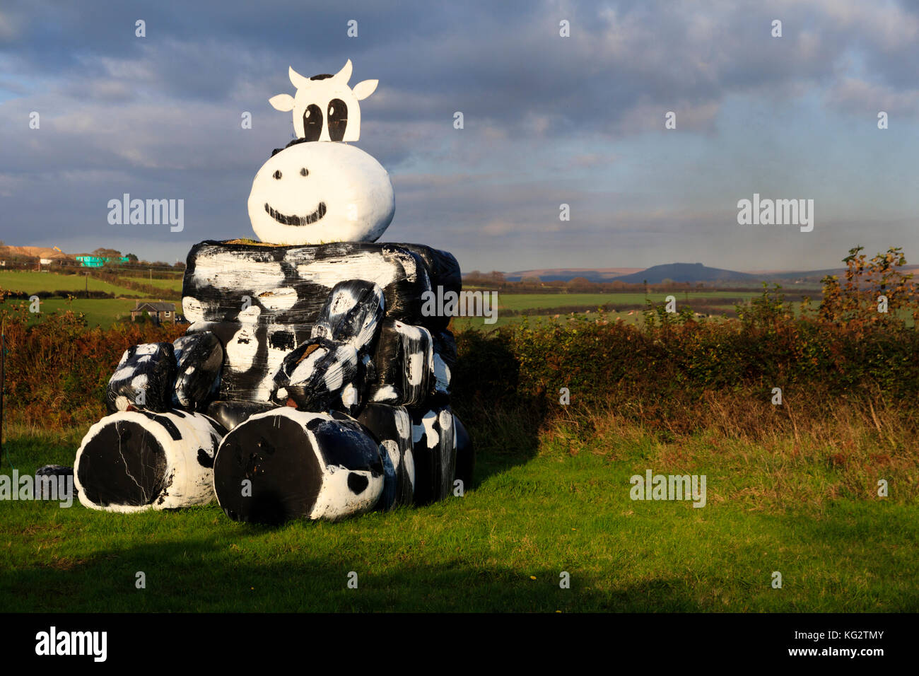 black-plastic-coated-hay-bales-for-winter-fodder-arranged-and-painted-KG2TMY.jpg