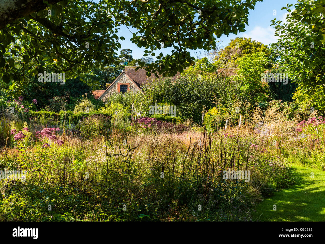 Wildflower meadow garden, Le Manoir, Oxfordshire, UK - Stock Image