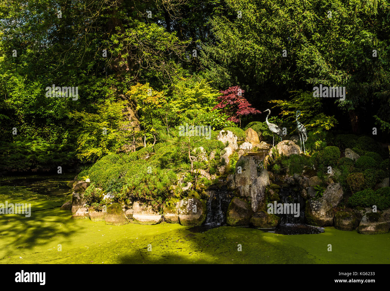 Japanese tea garden, Le Manoir, Oxfordshire, UK - Stock Image