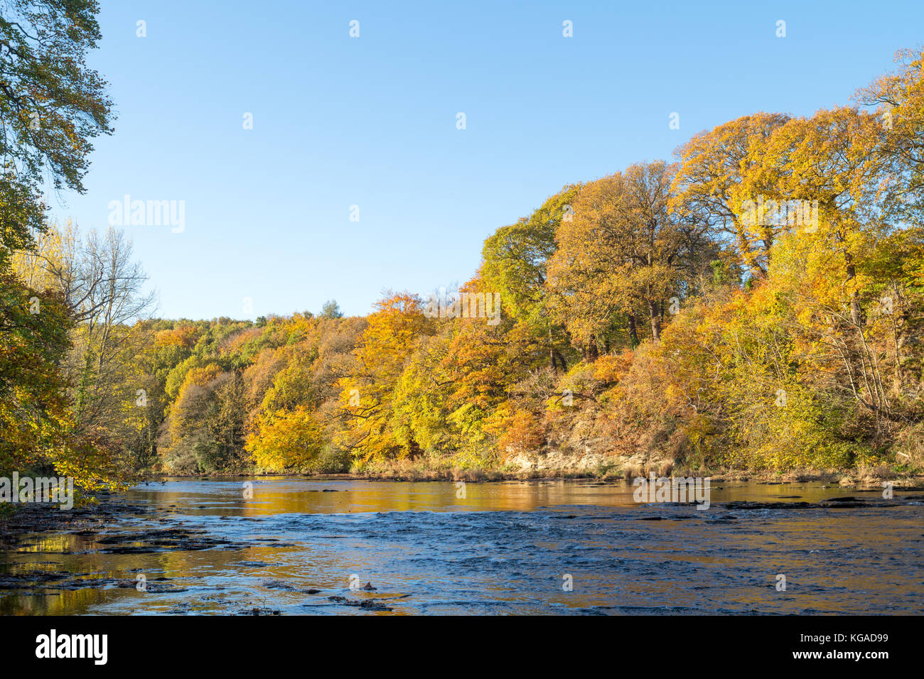 autumn-view-of-trees-along-the-river-wea