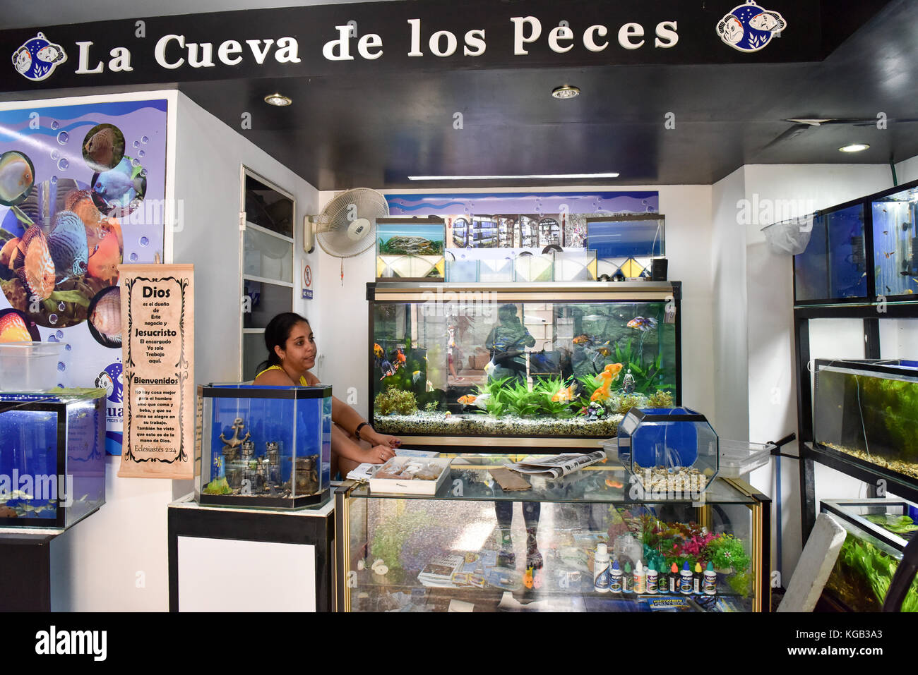 Pets store inside stock photos pets store inside stock for Exotic fish shop