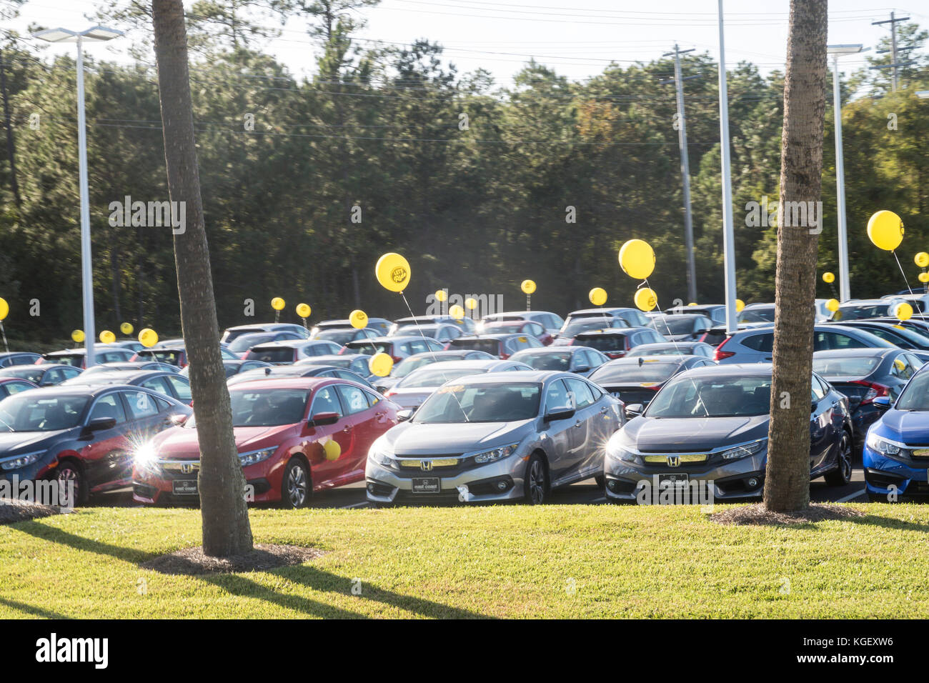 Myrtle Beach Honda Car Dealer