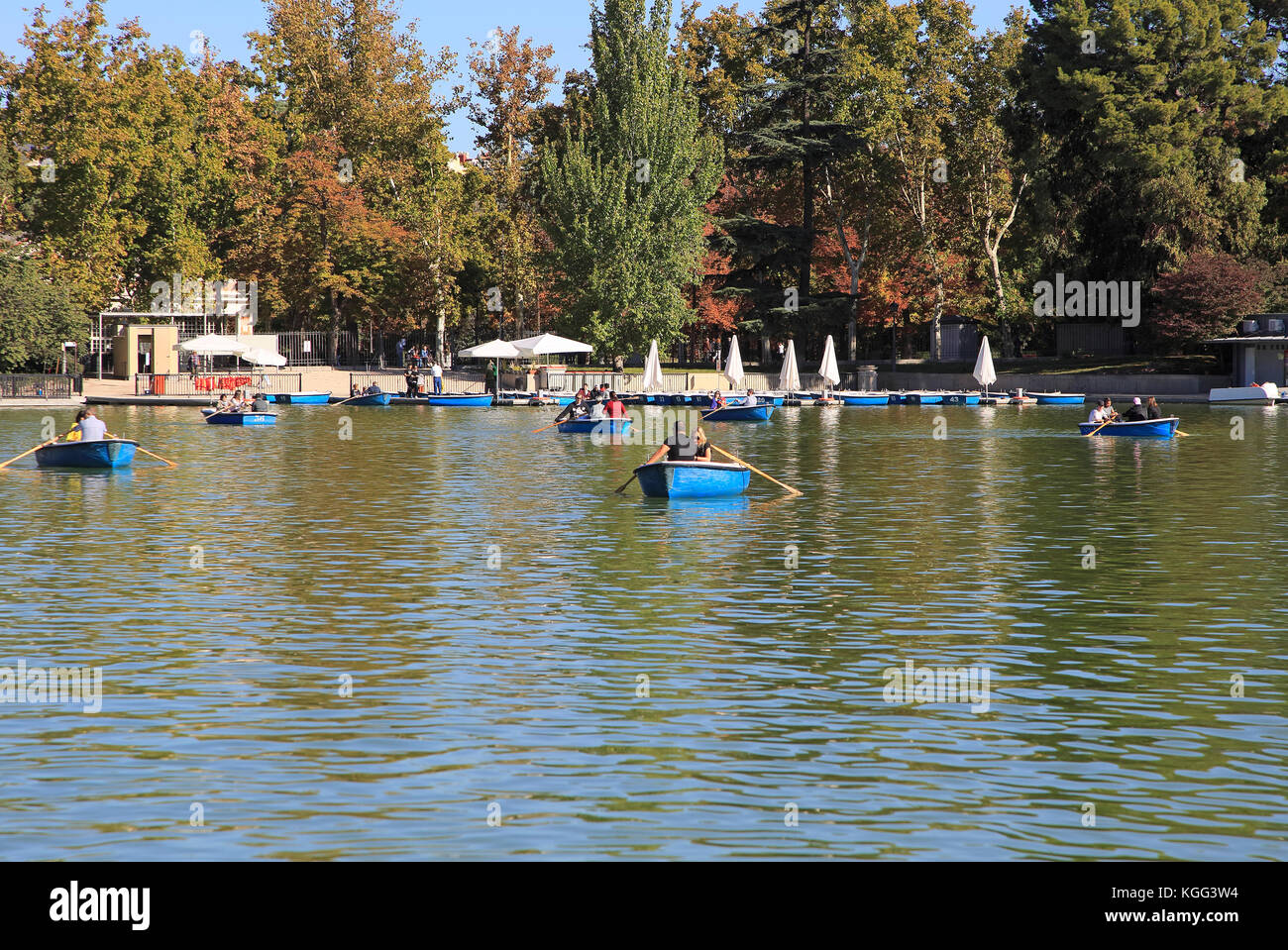 Rowing boats in boating pond of Estanque, El Retiro park, Madrid, Spain - Stock Image