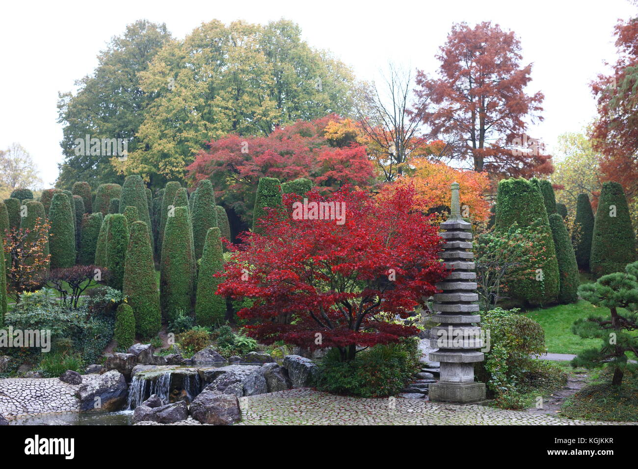 japanese-park-in-fall-and-a-tranquil-are