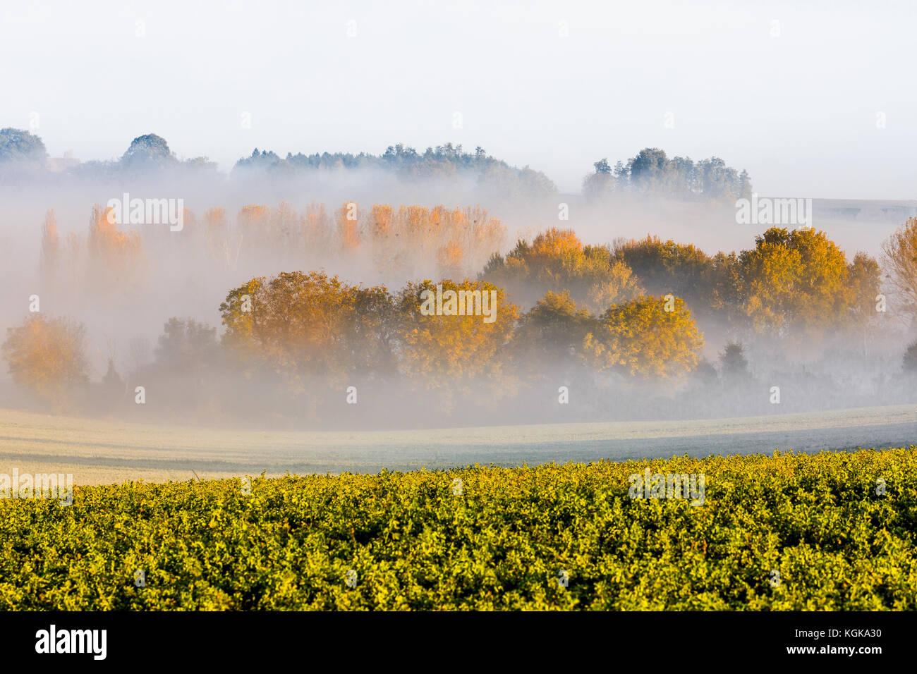 River mist hanging in landscape - France. - Stock Image