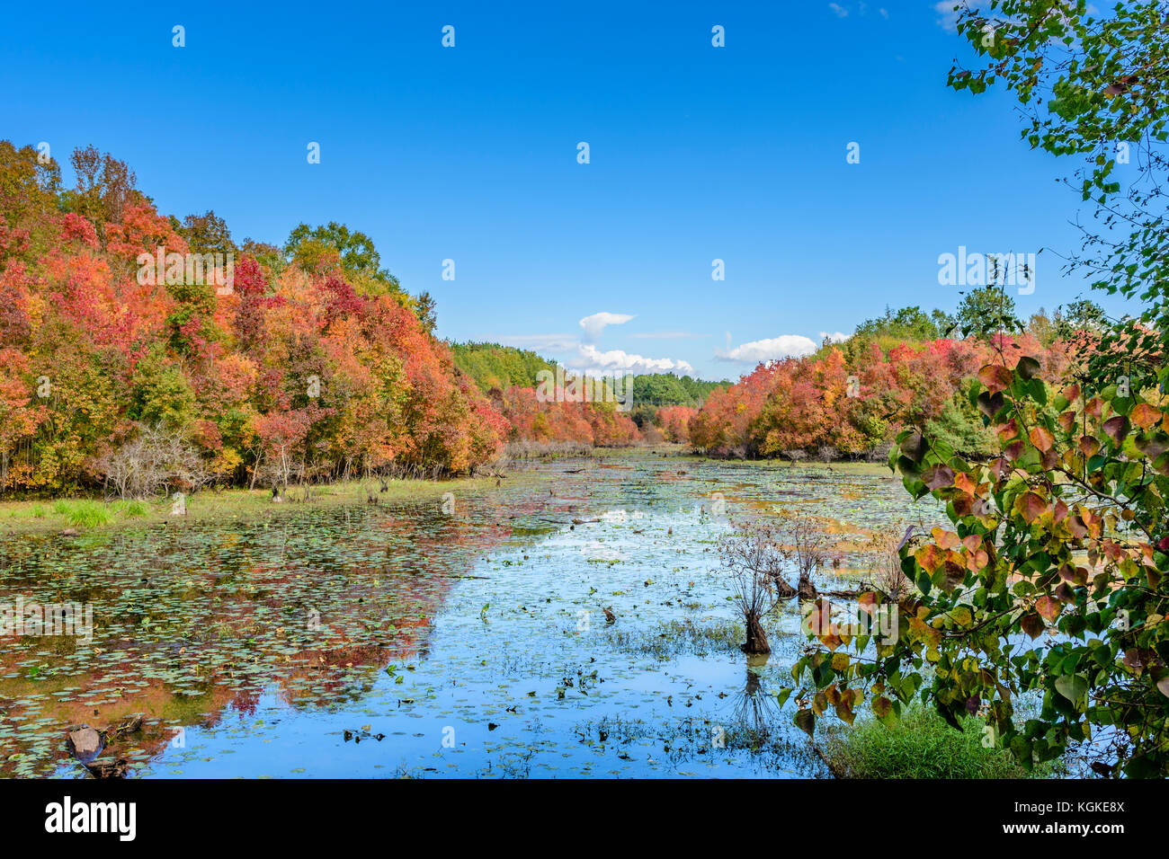 Autumn or Fall colors on a small lake in south central Alabama, USA. - Stock Image
