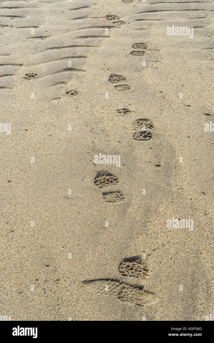 Trail of footprints in the wet rippled sand of a Cornish beach. - Stock Image
