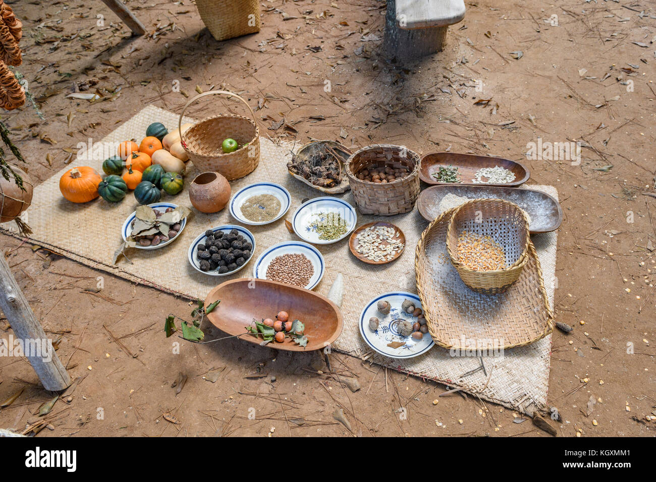 Traditional food of the Alibamu indian tribe, native American tribe, from the 1700's, laid out in a display - Stock Image