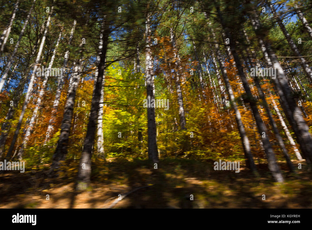 Abruzzo, Italy - Autumn colors - Stock Image