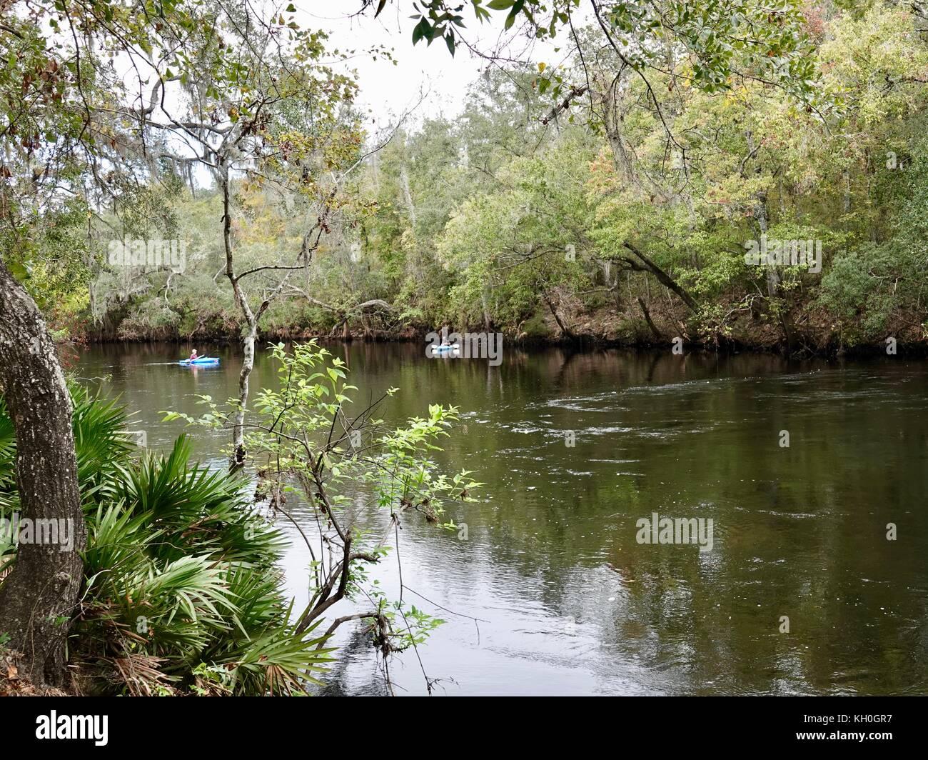 Santa fe river stock photos santa fe river stock images for Fishing in gainesville fl