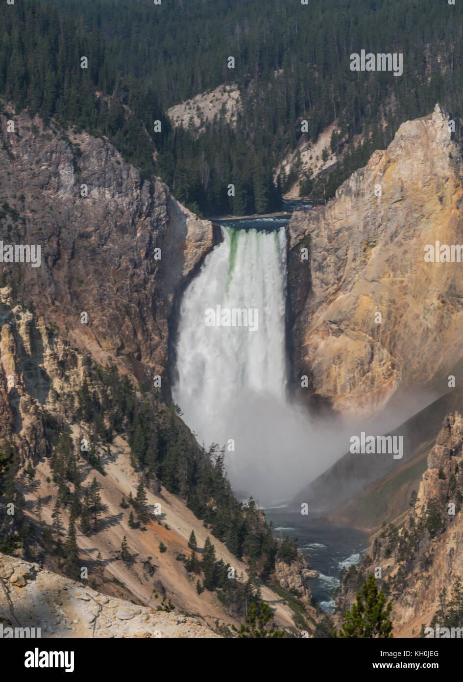 Yellowstone Falls Rushes into Valley in summer - Stock Image