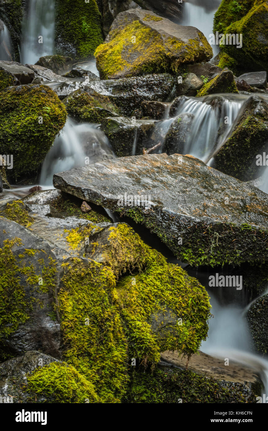 Close Up of Water Rushing Over Mossy Rocks - Stock Image