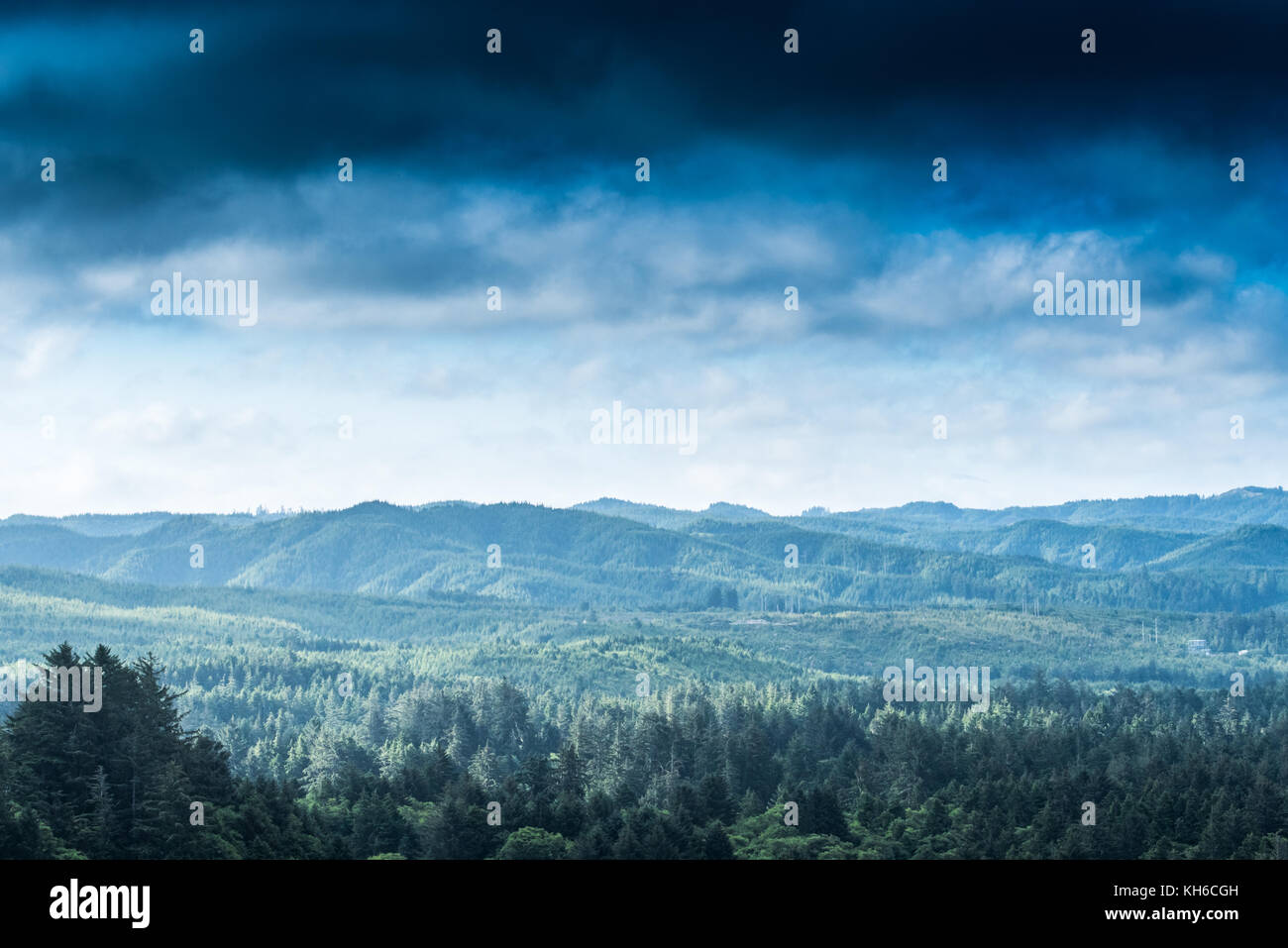 Clouds Blow In Over Oregon Coastal Forest during summer - Stock Image