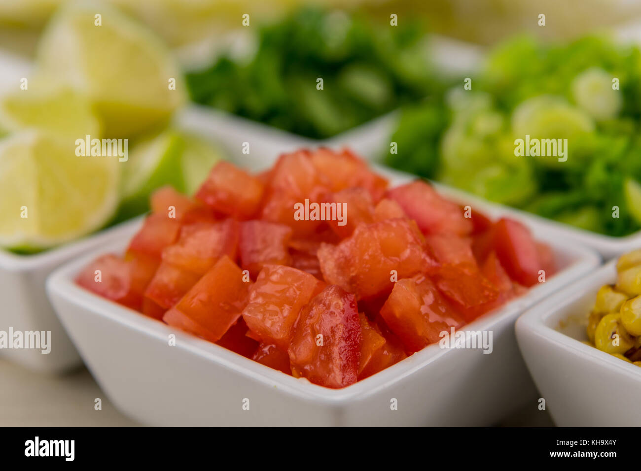 Diced Tomatoes in White Bowl around salsa ingredients - Stock Image