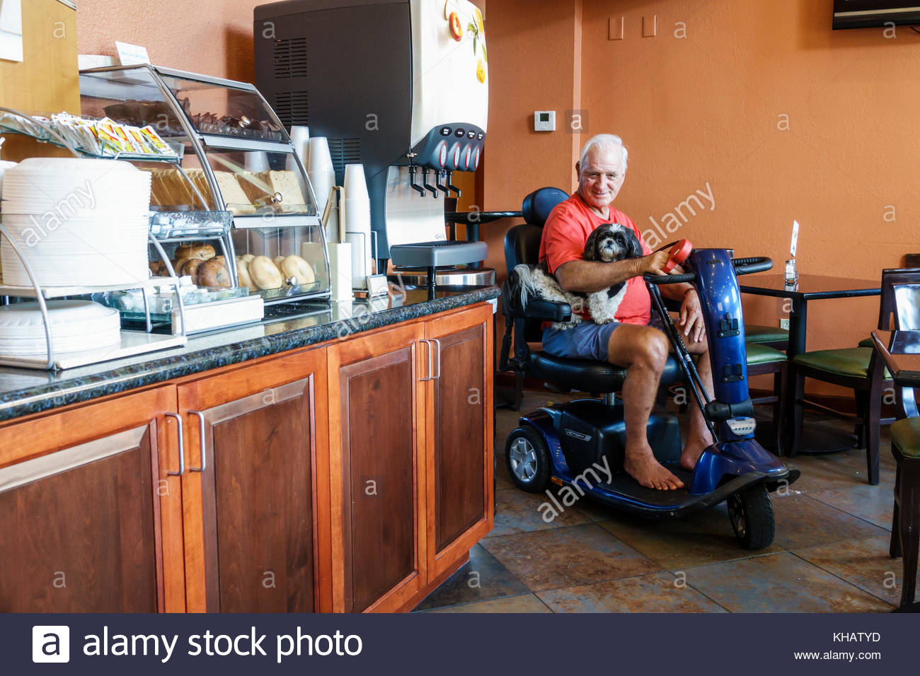 Florida Clearwater Holiday Inn Express hotel motel breakfast room senior man electric cart wheelchair disabled dog - Stock Image