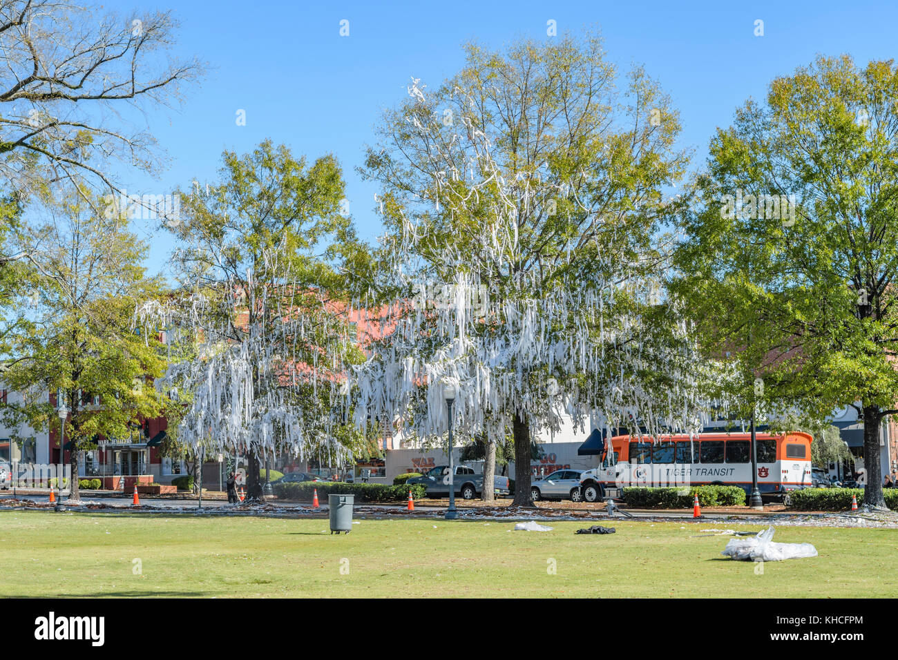 Clean up at Toomer's Corner, removing white toilet paper from the trees, after a win by Auburn University football - Stock Image