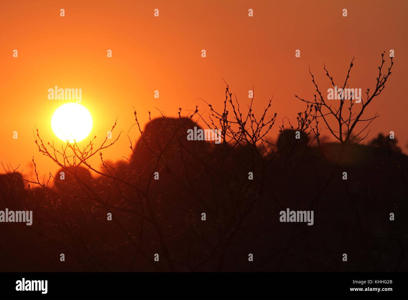 Matobo Hills,  ZIMBABWE -  17 October 2011:  Sunrise over the Matopos Hills in Zimbabwe. Credit: David Mbiyu/Alamy - Stock Image