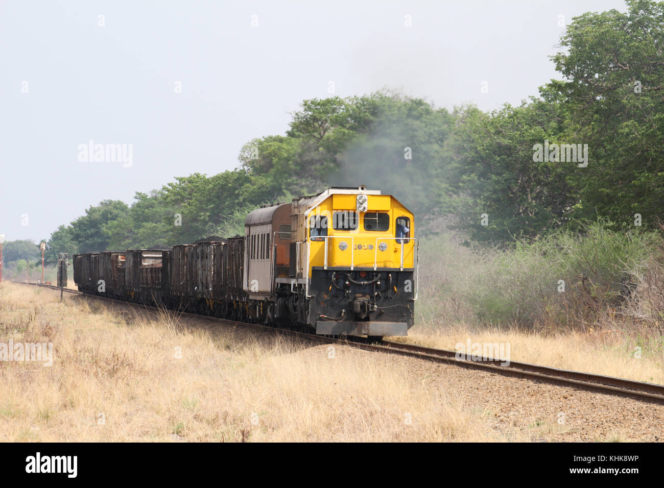 HWANGE, ZIMBABWE -  19 October. A southbound good train makes it way through the Hwange National Park headed to - Stock Image