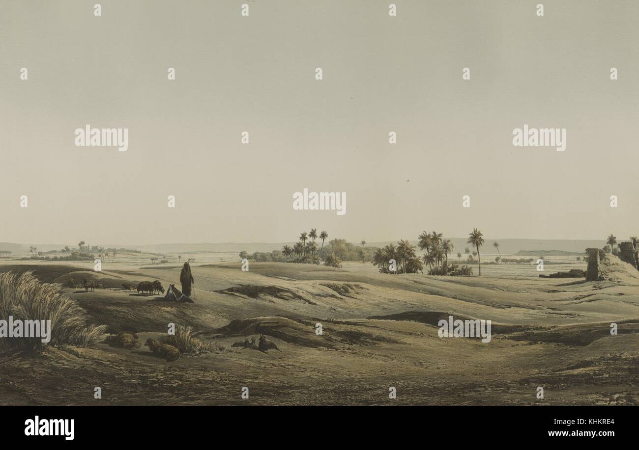 Color lithograph depicting a desert panorama with a shepherd and several sheep, palm trees in the background, titled - Stock Image