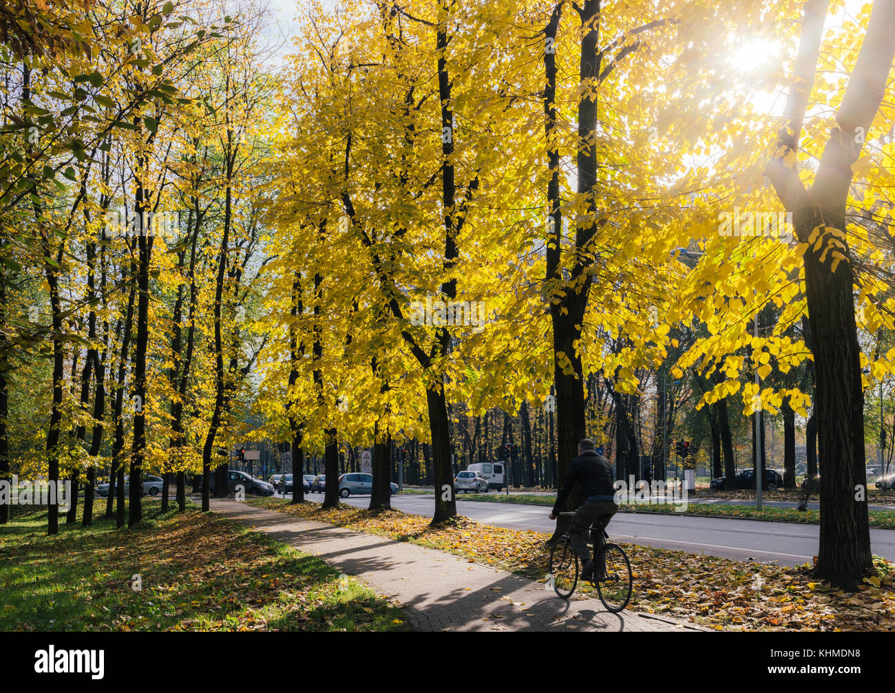 Cyclist on cycling path with autumn colours in Northern Italy Stock Photo