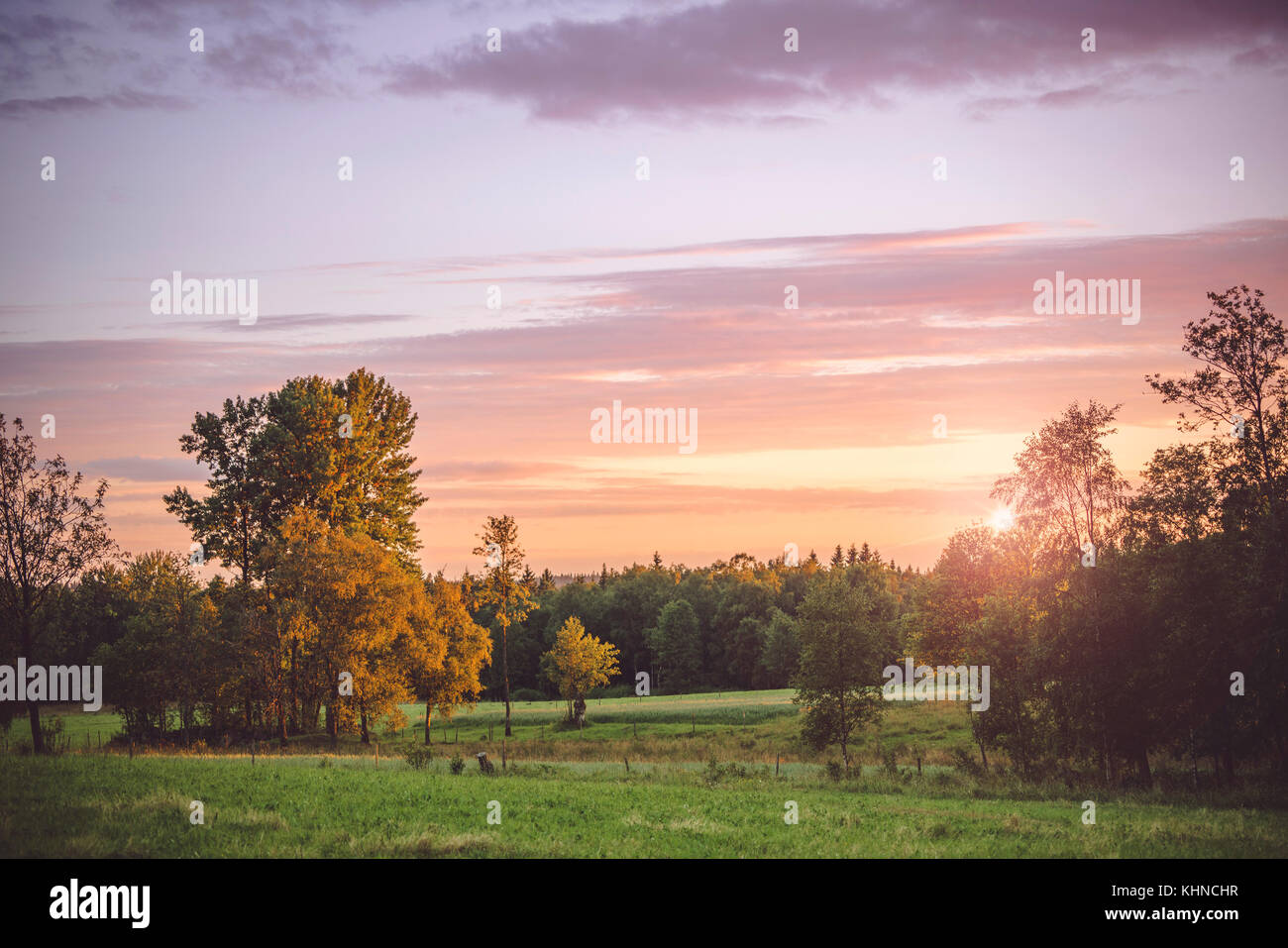 Sunset in a countryside landscape with trees and meadows with a violet light in the sky - Stock Image
