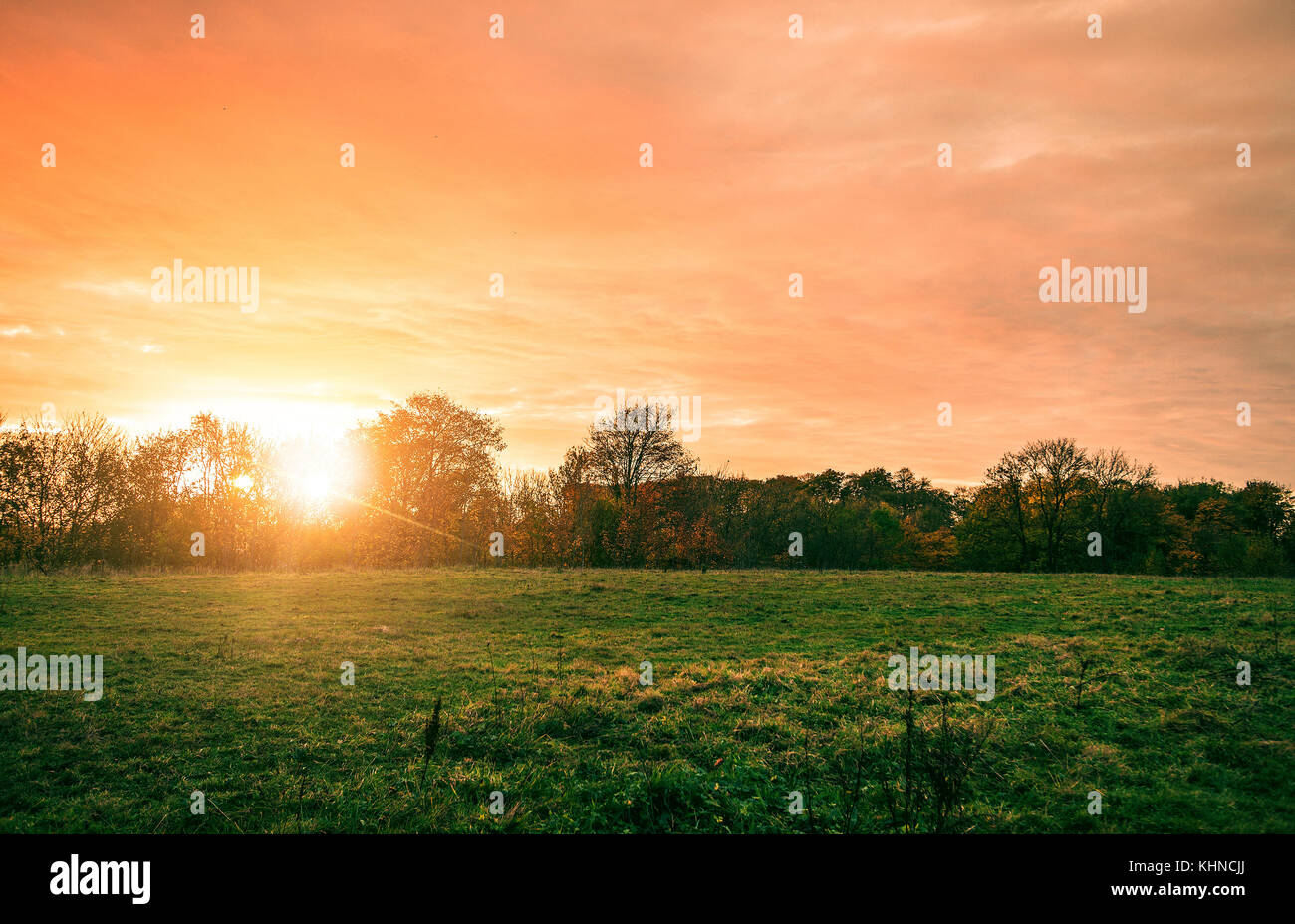 Rural landscape with a beautiful countryside sunset in red and orange colors with a green field in the front - Stock Image