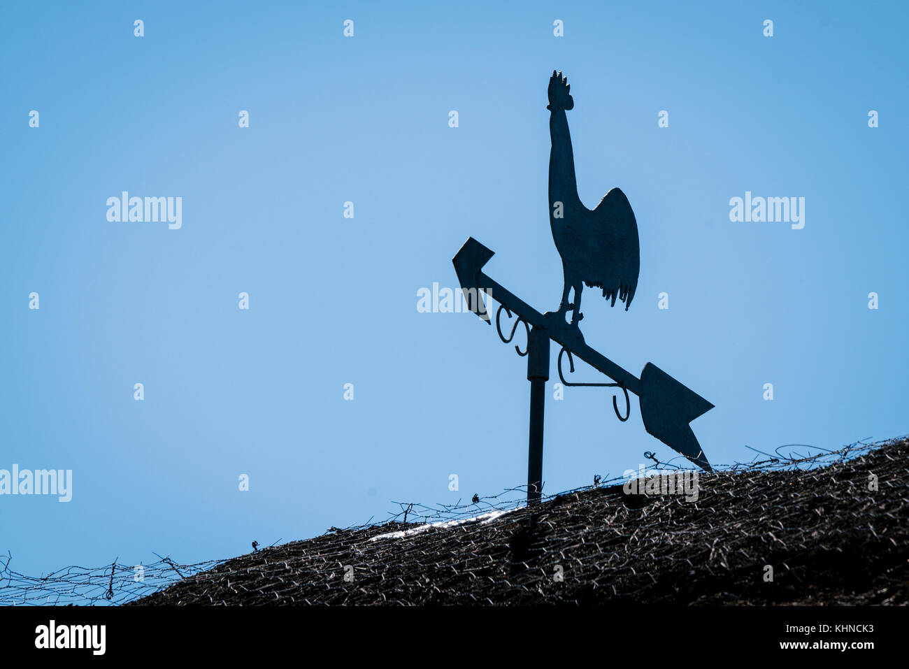 Weathervane silhouette of a rooster on a barnyard roof with blue sky in the background - Stock Image