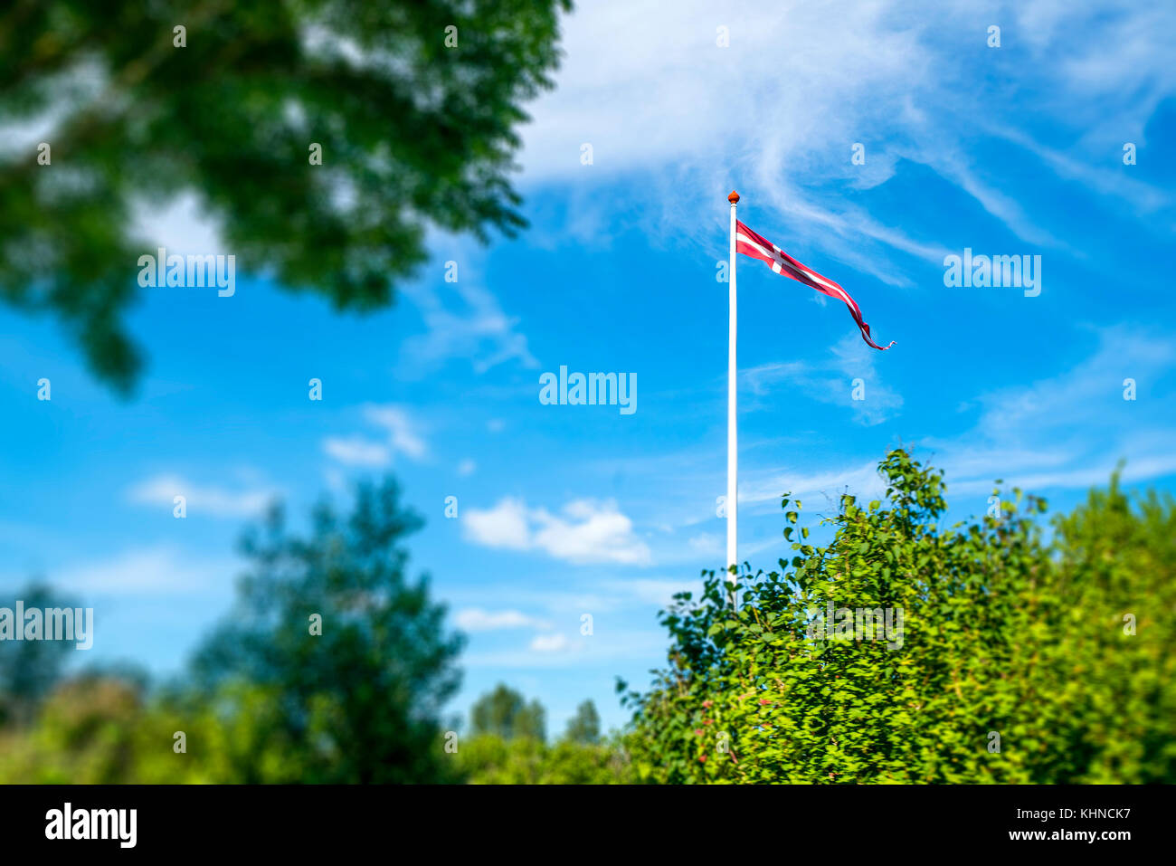 Danish pennant on a white flagpole in a green garden in the summer - Stock Image