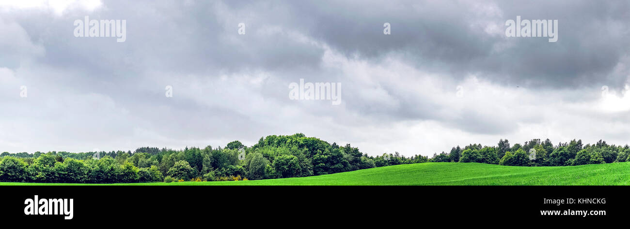 Rural panorama landscape with dark clouds over green fields with trees - Stock Image