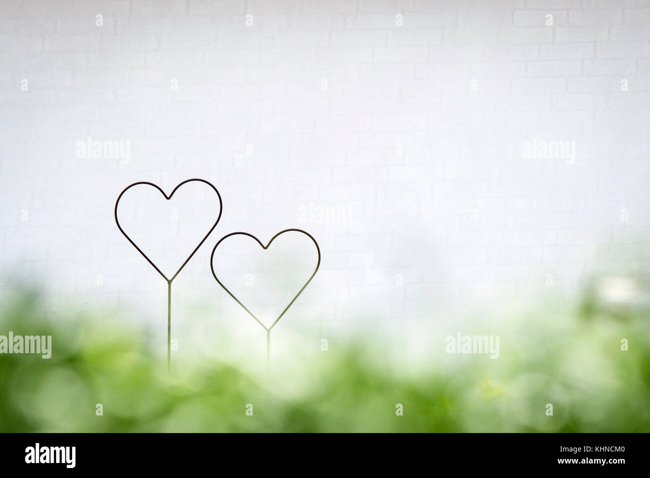 Two hearts together in a bright future with green colors in decoratiive shapes in the spring - Stock Image