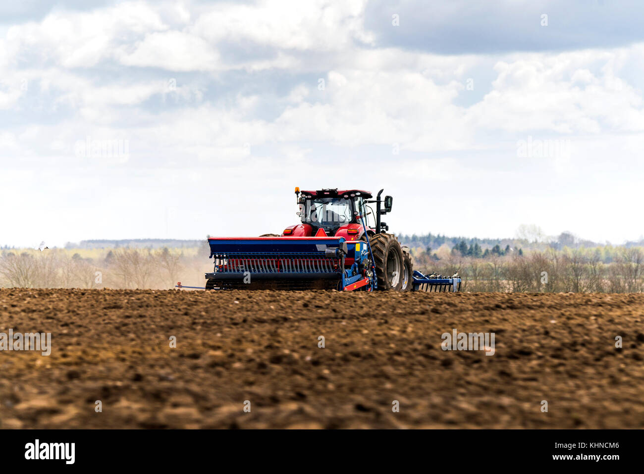 Red tractor driving on a field with a blue plow making the soil ready for the new season - Stock Image
