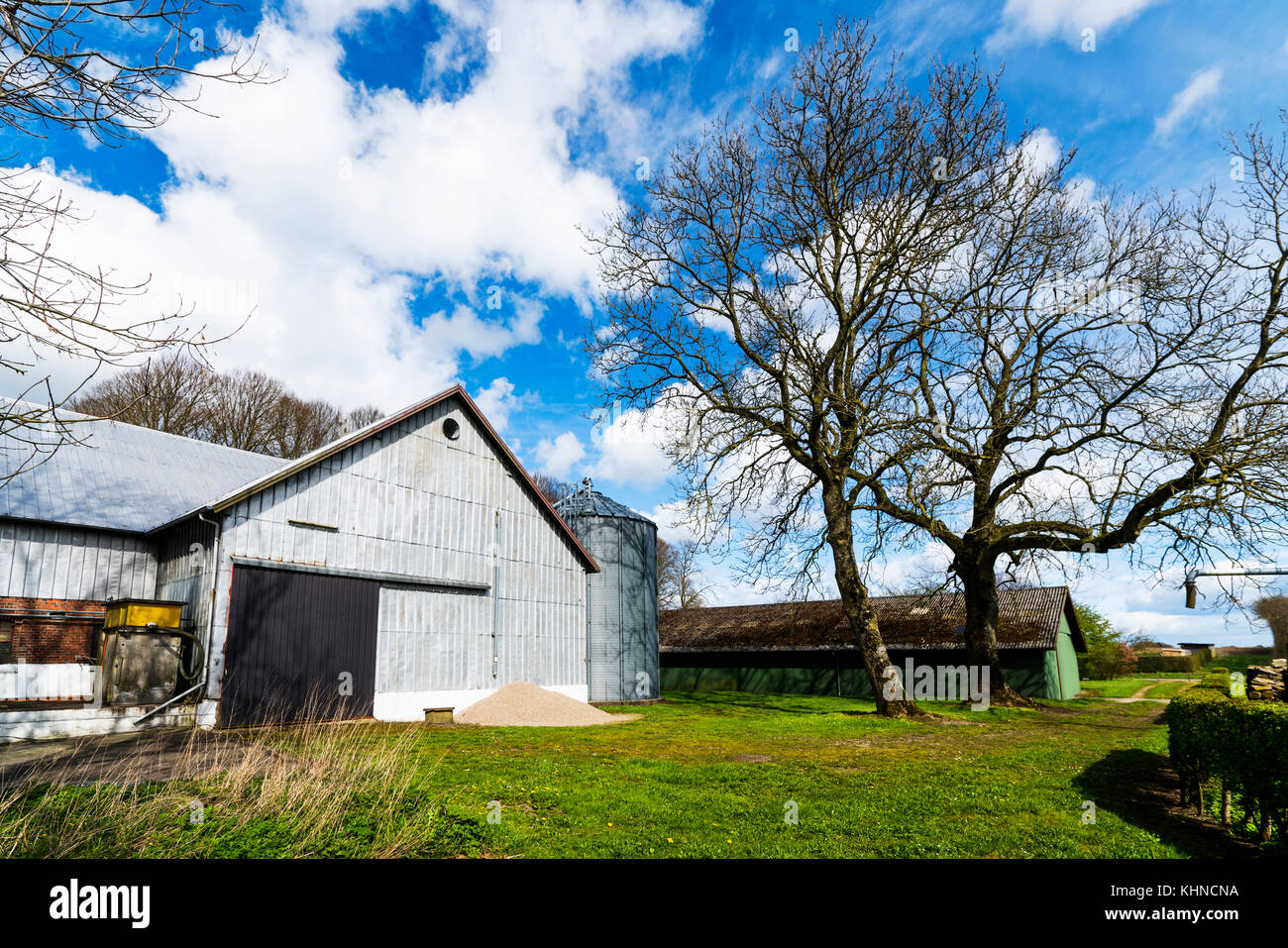 Rural barnyard with a silo and green grass in the spring - Stock Image