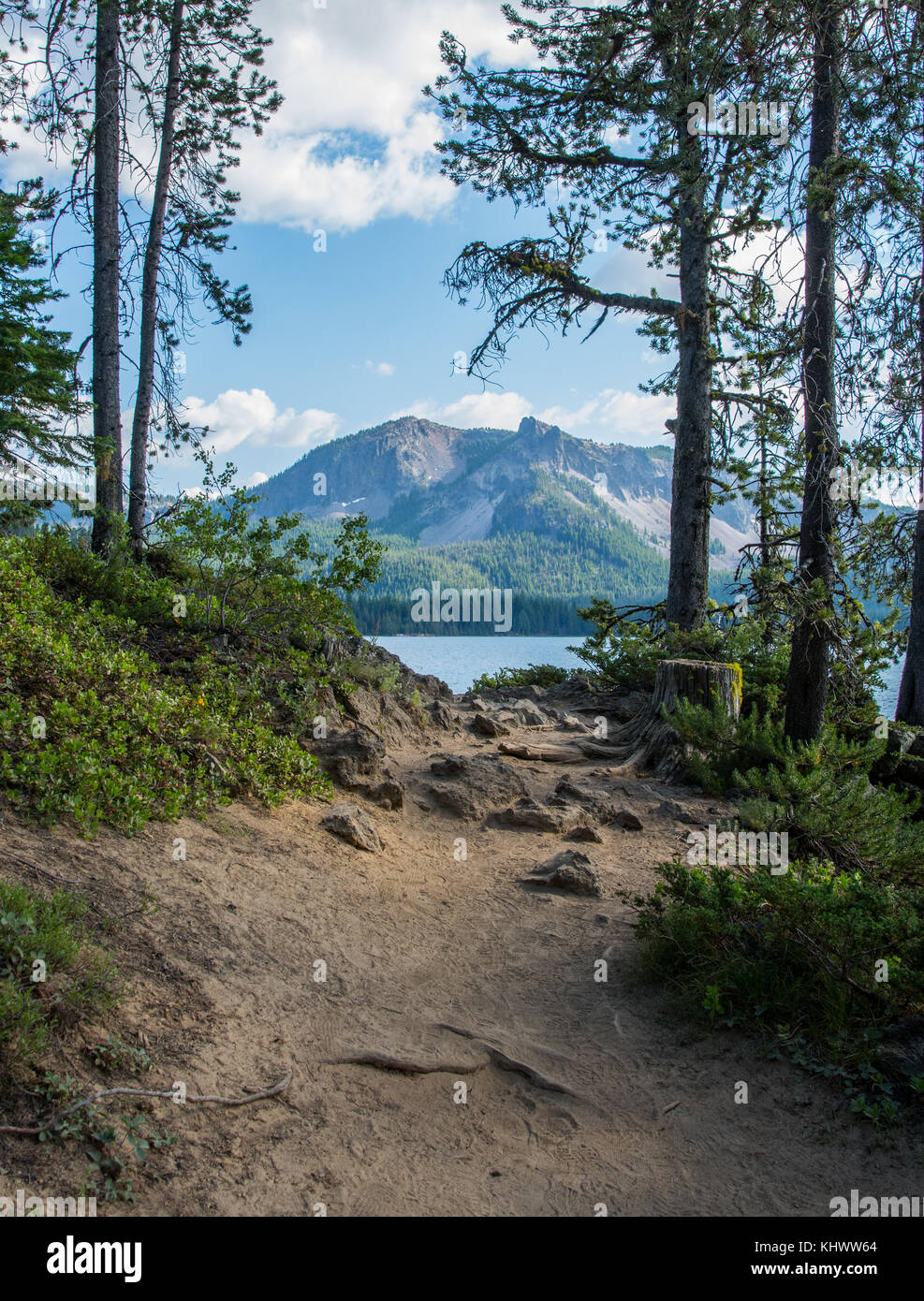 Paulina Peak Framed by Trees Along Trail - Stock Image