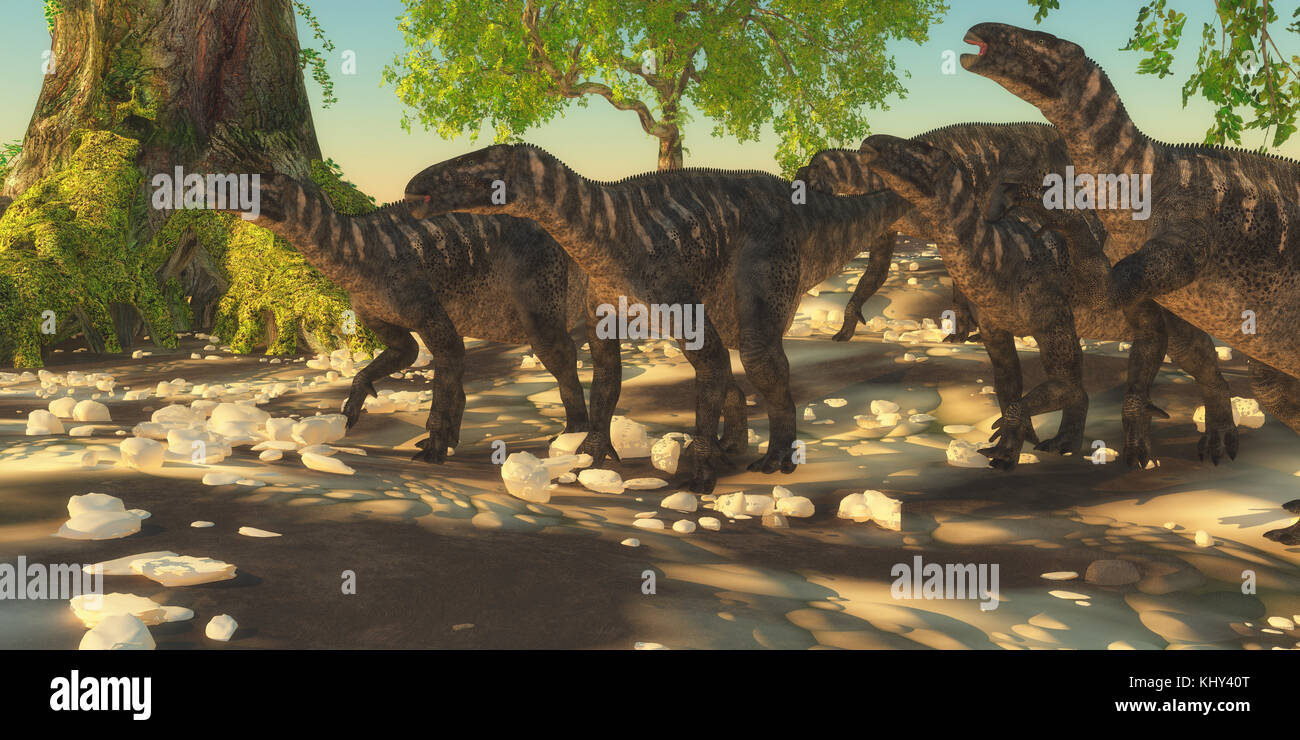 Iguanodon Dinosaurs - Iguanodon herbivorous dinosaurs lived during the Cretaceous Period of Europe and walked with - Stock Image