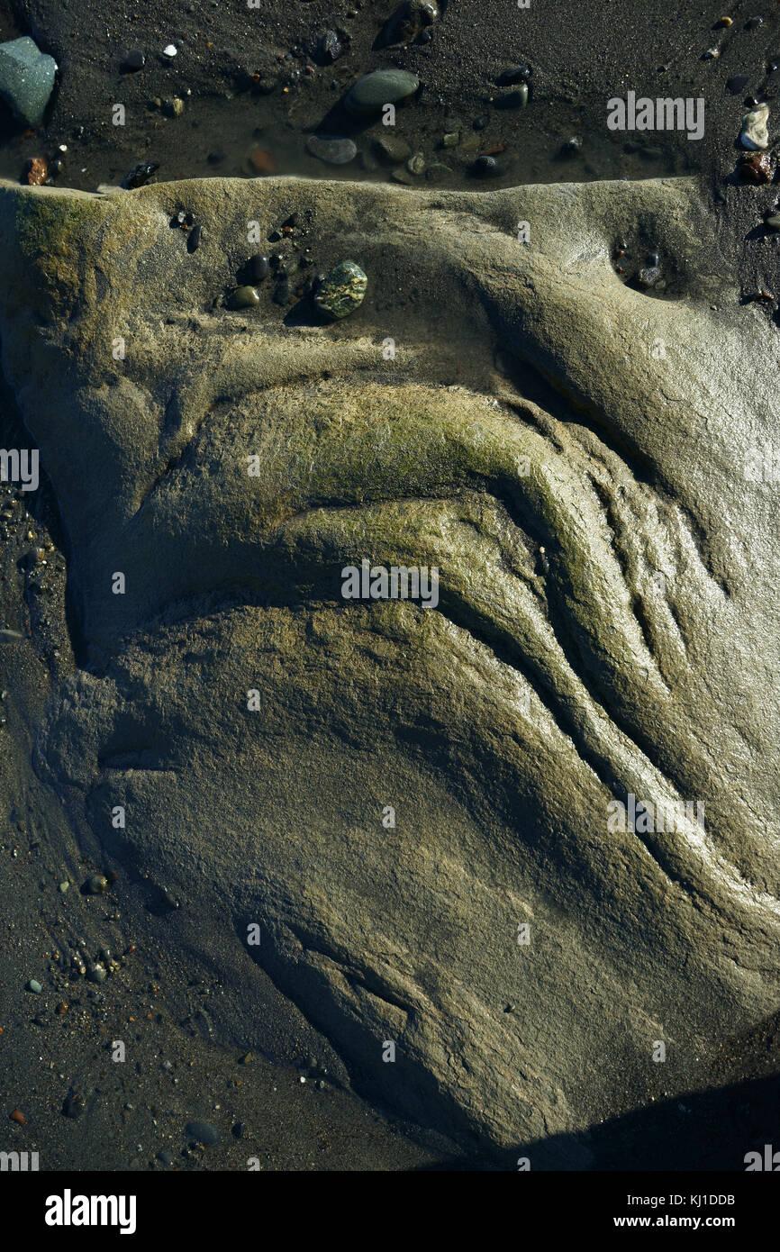 Eroded rock boulder in distorted face like grimace on tidal beach of Cook Inlet, Kenai Peninsula, Alaska - Stock Image