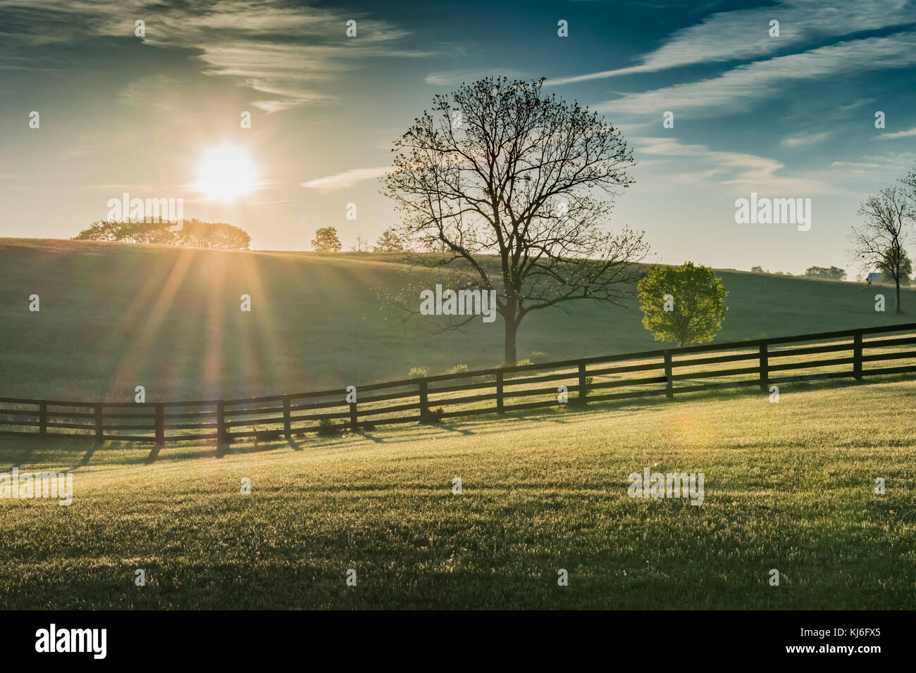 Sun Shines Over Rolling Kentucky Field at Dawn - Stock Image