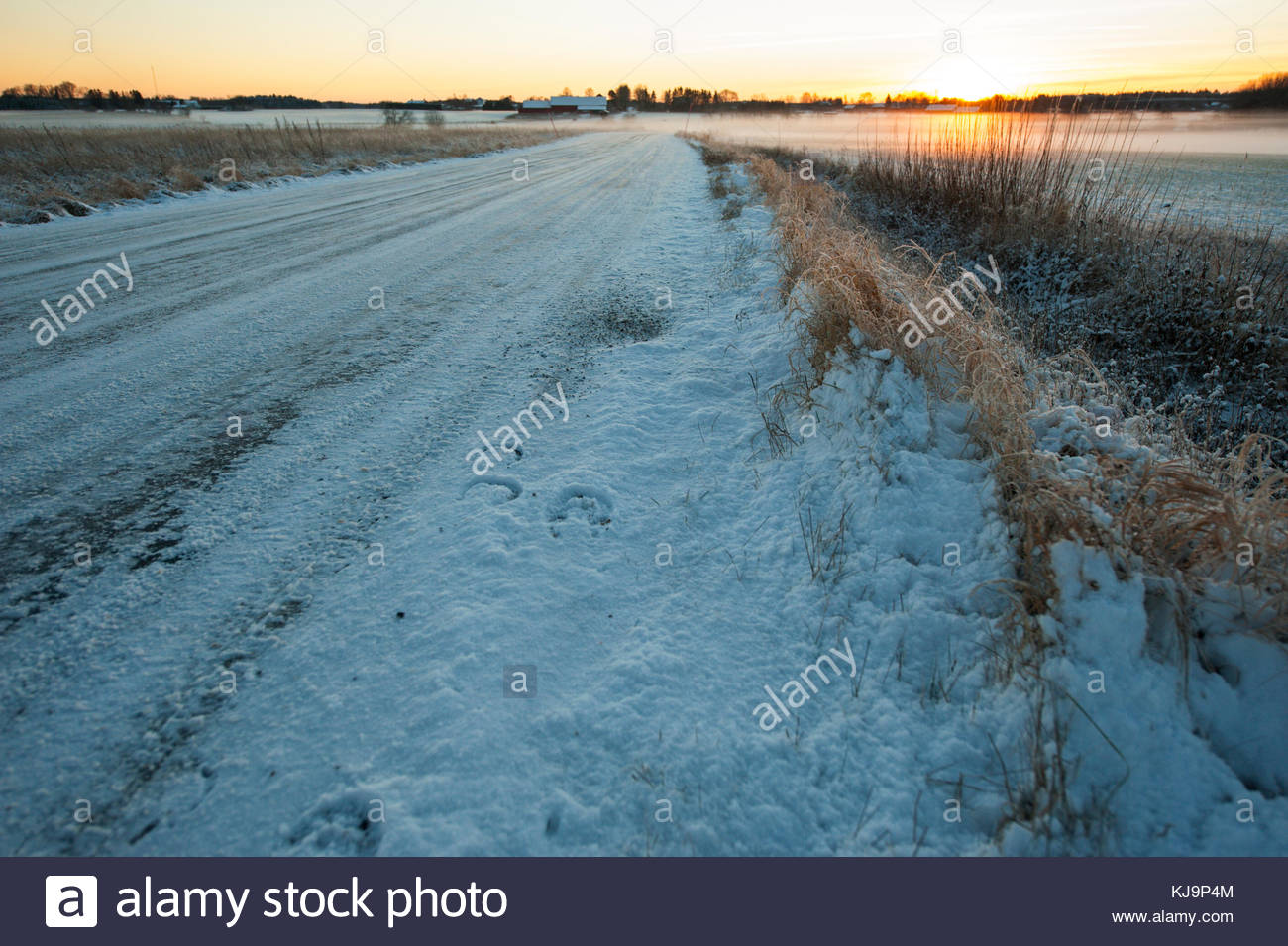 Footsteps in the snow by a horse. - Stock Image