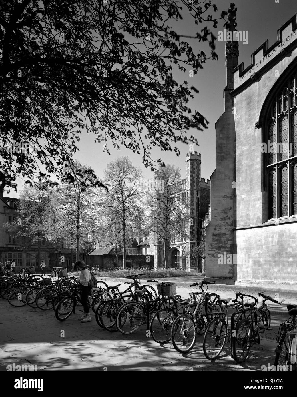 Bicycle rank in Trinity Street Cambridge opposite the chapel of Trinity College - Stock Image