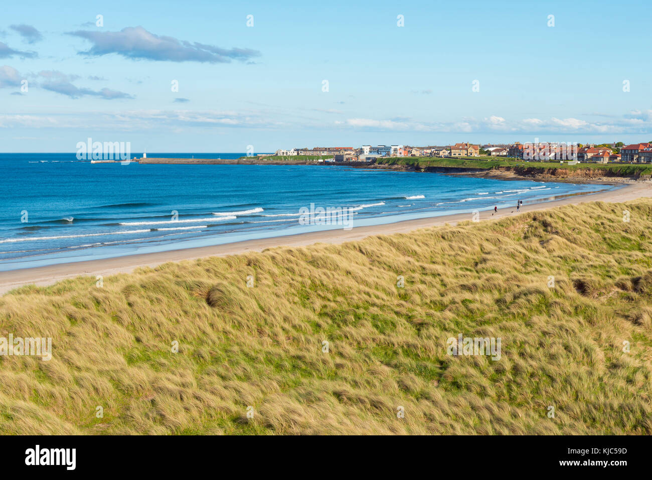 Grassy dunes and beach along the North Sea, town of Seahouses in the background in Northumberland, England, United - Stock Image