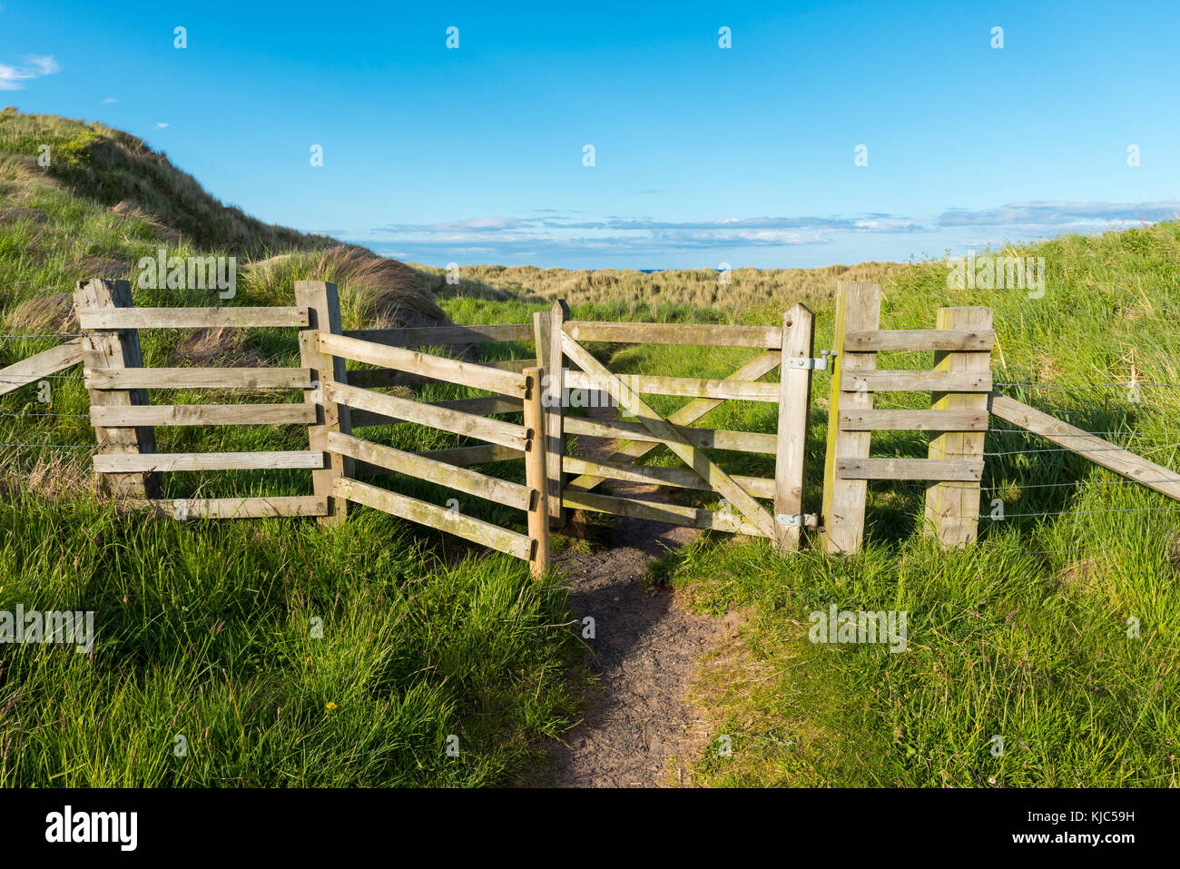 Willow fence with passage through the sand dunes in the village of Seahouses in Northumberland, England, United - Stock Image