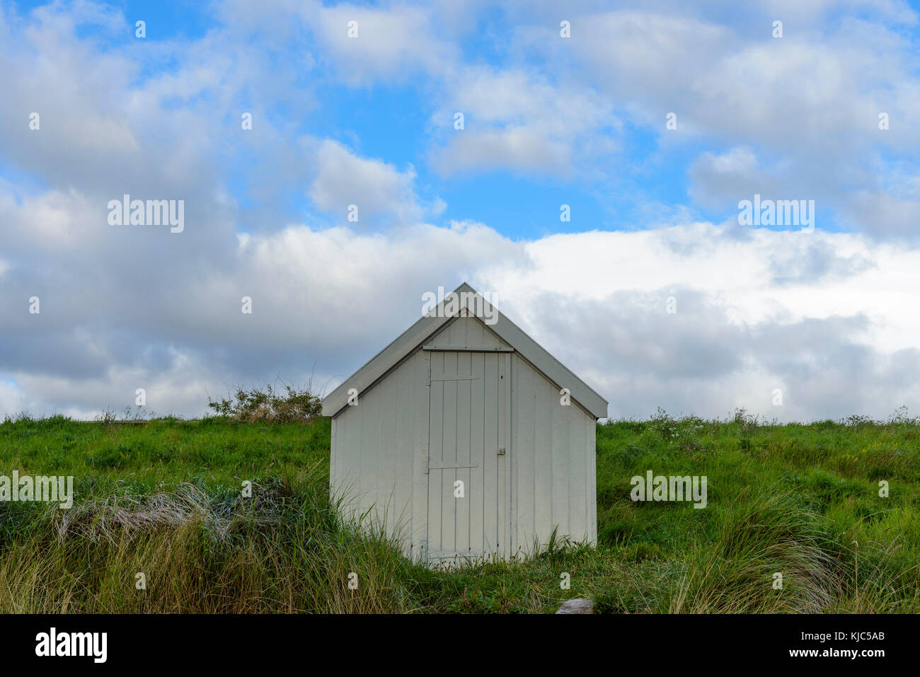 Fisherman's hut on the dune heath at the beach in Bamburgh in Northumberland, England, United Kingdom - Stock Image
