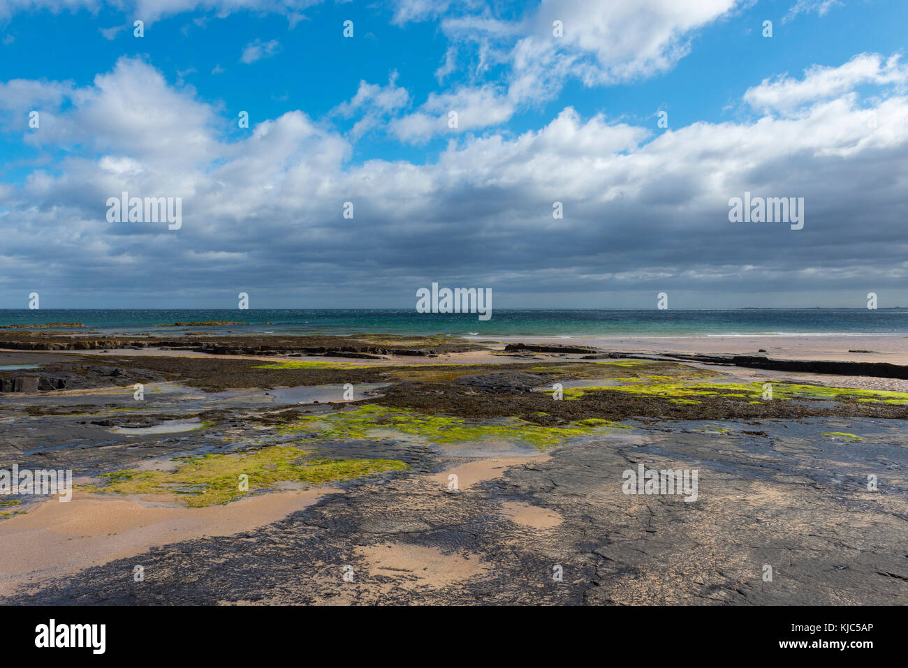 Rocky beach with dramatic clouds over the North Sea at Bamburgh in Northumberland, England, United Kingdom - Stock Image