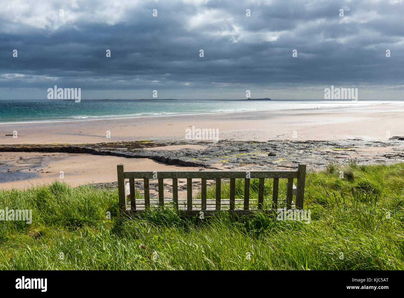 Wooden bench on the dune heath overlooking the beach and the North Sea at Bamburgh in Northumberland, England, United - Stock Image