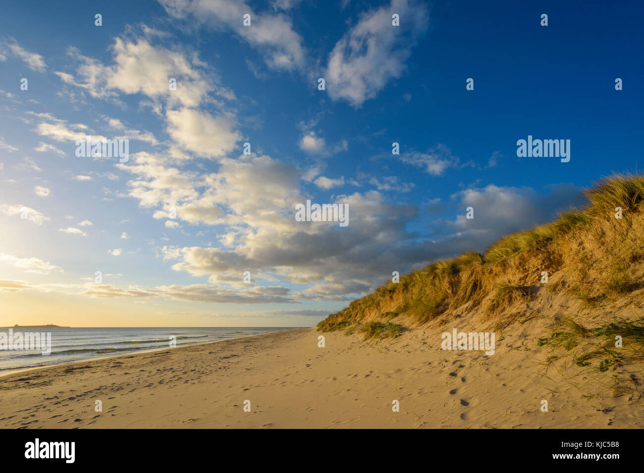 Footprints in the sand along the beach with the North Sea at Bamburgh in Northumberland, England, United Kingdom - Stock Image